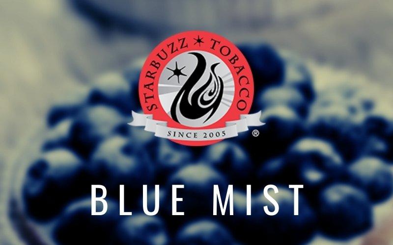 Best Starbuzz Flavor - Blue Mist