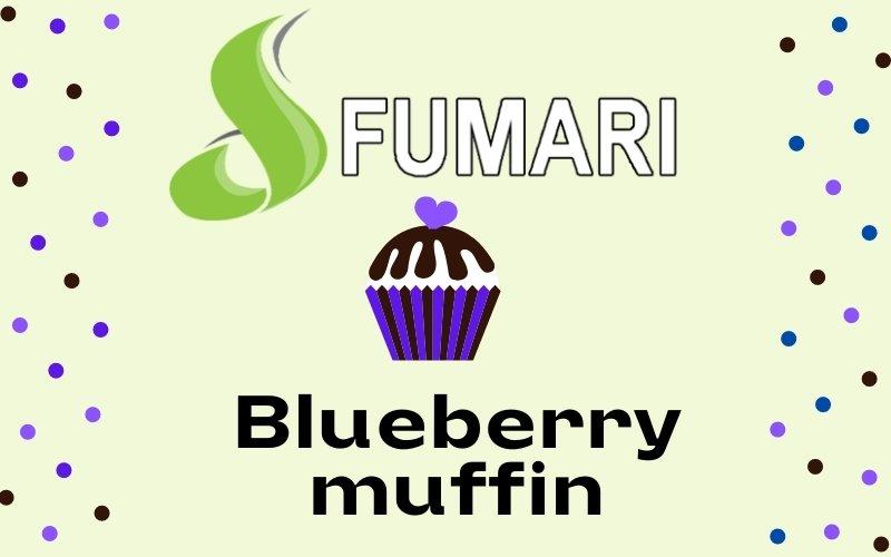 Fumari blueberry muffin