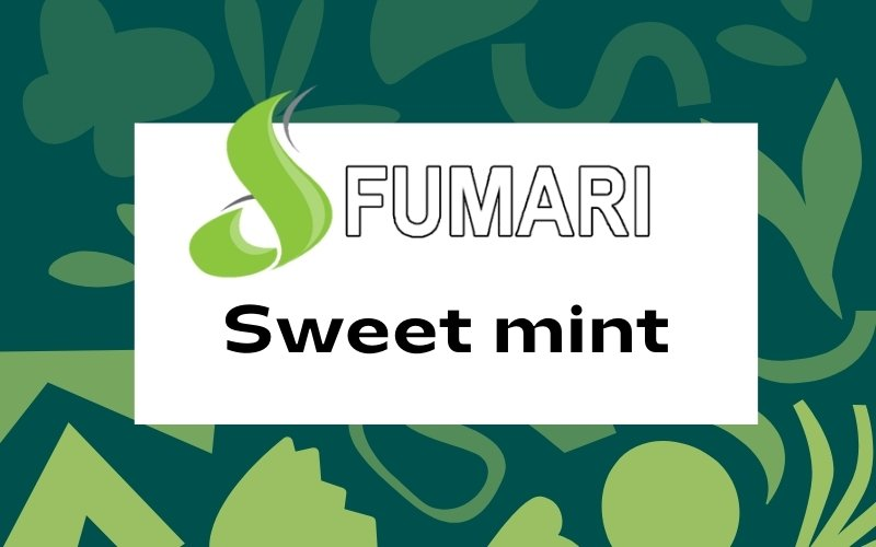 Fumari sweet mint review