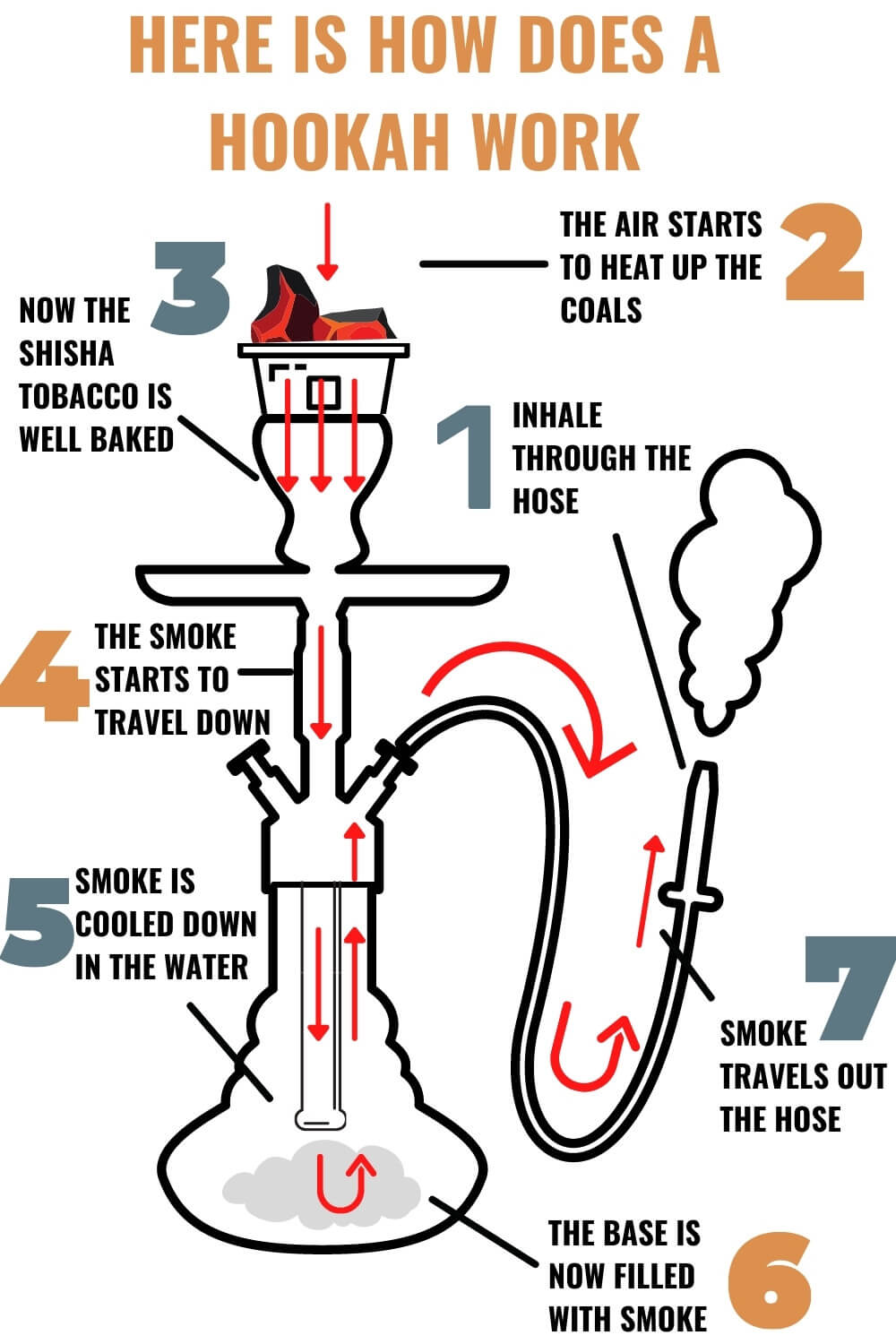 How does a hookah work - Infographic